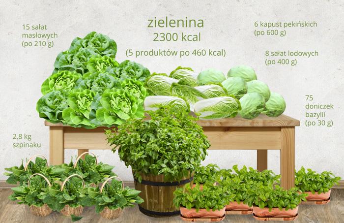 ile-kalorii-ma-zielenina-1
